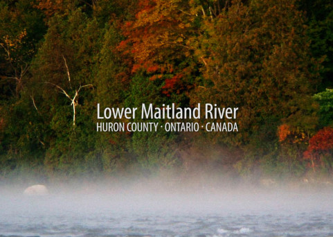 Explore the Lower Maitland River